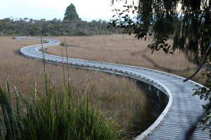 Okarito Wetlands Walk