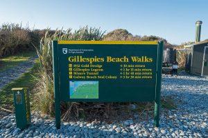 Gillespies Walks Fox Glacier